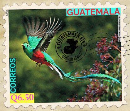 El Quetzal, Ave Nacional de Guatemala