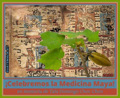 La medicina tradicional maya, En memoria de Tata Domingo Choc Chen